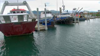 Many Tug Boats Docked In Harbor