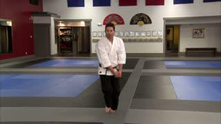 Martial Arts Instructor Performing Tae Kwon Do 3