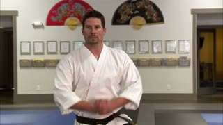 Martial Arts Instructor Performing Tae Kwon Do 4