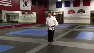 Martial Arts Instructor Performing Tae Kwon Do 6