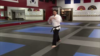 Martial Arts Instructor Performing Tae Kwon Do 8