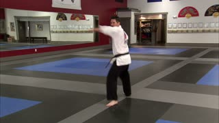 Martial Arts Instructor Performing Tae Kwon Do 9