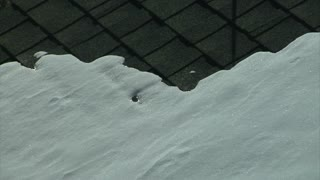 Melting Snow On Rooftop