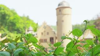 Mespelbrunn Castle Behind Shrubbery