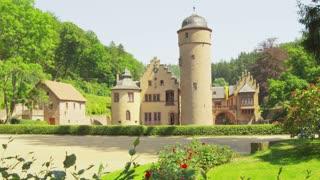 Mespelbrunn Castle Long Shot