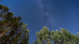 Meteor Shower and Starscape with Milky Way Stars