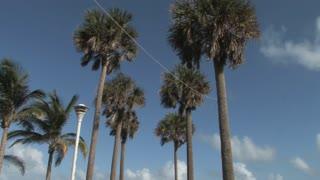 Miami Beach 4
