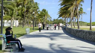 Miami Beach Sidewalk Timelapse 2