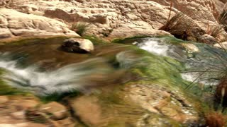Mossy Bottomed Stream Flowing Toward Ein Gedi Falls