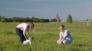 Mother, father and their little son having fun in the countryside. They throwing up grass, father kissing his wife and son.