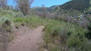 Mountain Bikers Fly Down Dusty Summer Trail