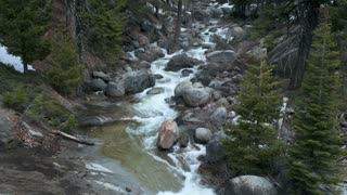 Mountain Forest Stream Timelapse