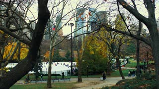 Moving Shot of Central Park Scene 2