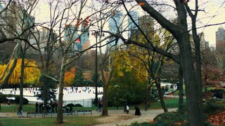 Moving Shot of Central Park Scene