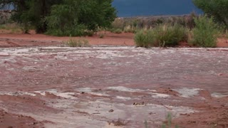 Muddy River Running Through Desert Floor