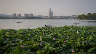 Nanjing Lake with Lotus Plants and Boats