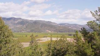 Napa Valley Scenic Landscape Pan