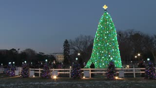 National Christmas Tree at Night