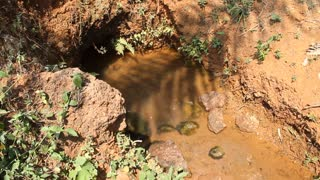 Natural Spring With Dirty Water