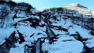 natural water source waterfall fauna flora