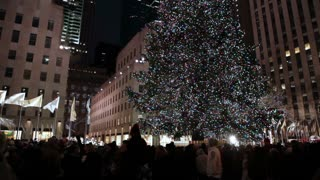 New York City Christmas Tree 3
