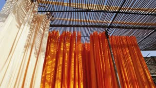 Newly dyed fabric being hung up to dry, Sari garment factory, Rajasthan, India