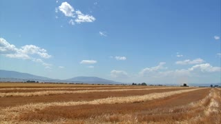 Newly Harvested Wheat Field And Blue Sky