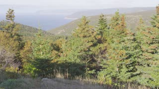 Nova Scotia Coastline Seen From Wooded Hill