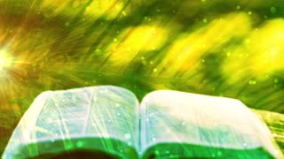 Palm Sunday Open Bible Background