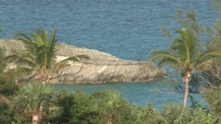 Palm Trees and Huge Rock Along Water