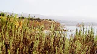 Palos Verdes Coastline Pan