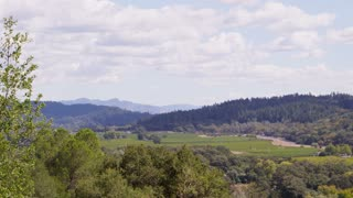 Pan Across Napa Valley Landscape