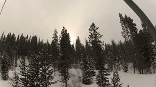 Passing Snowy Pine Trees Up Mountain From Ski Chair