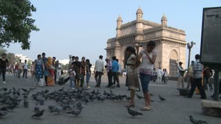 People and Birds Near Gateway of India