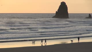 People and Dogs Along Cannon Beach Shoreline