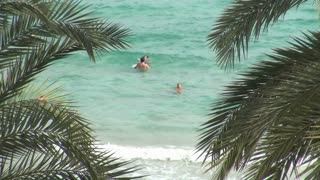 People Swimming in Ocean with Palm Leaves 2
