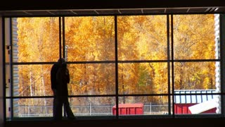 People Walk By Large Windows With Fall Leaves