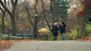 People Walking Through Park in New York