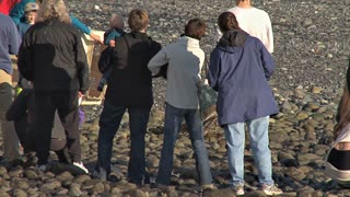 People Watching Rehabilitated Seal Being Released Back Into the Wild