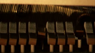 Piano Hammers Striking Strings of Piano 4