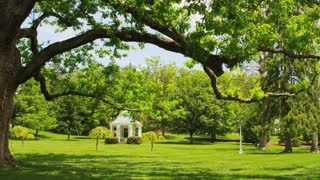Picturesque Gazebo And Trees