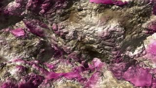Pink and gray organic matter moves on screen (Loop).