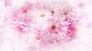 Pink Flowers 2 - Abstract Wedding Background 05
