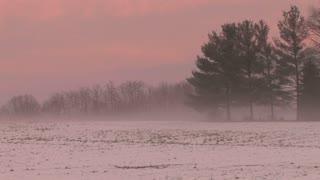Pink Sky Behind Snowy Field 2