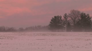 Pink Sky Behind Snowy Field 3