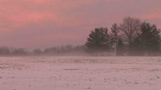 Pink Sky Behind Snowy Field 4