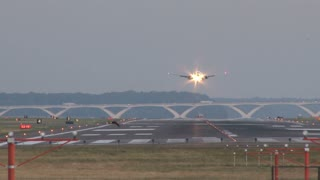 Plane Landing on Runway with Bird Flying Across