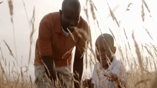 African American father playing with son in wheat field