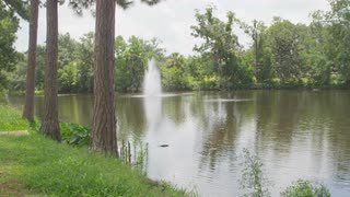Pond And Fountain In Swampy Bayou