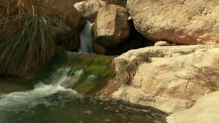 Pool of Water at Ein Gedi 2